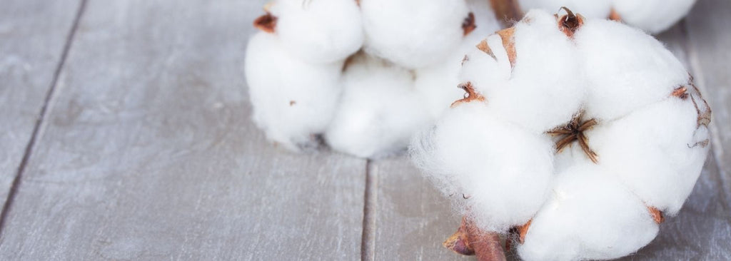 reasons why organic cotton is better than normal cotton