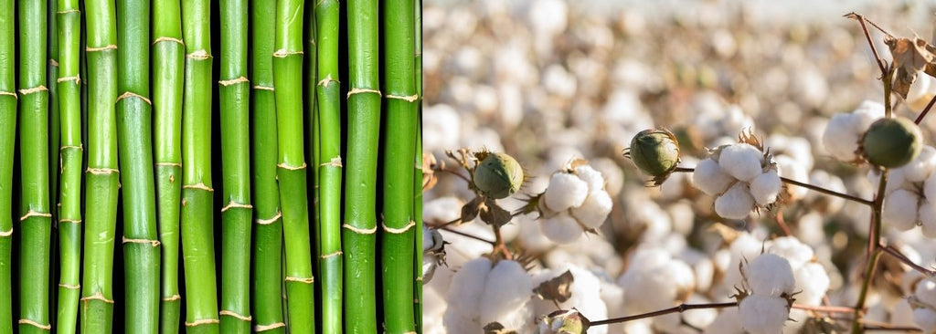 Is bamboo better than cotton? Bamboo vs Cotton 20 Facts