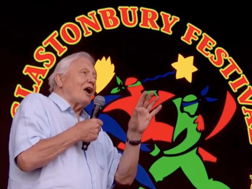 david Attenborough at Glastonbury plastic free festival