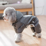 Dog Track Suit