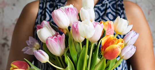 18 Ways to Keep Tulips from Drooping