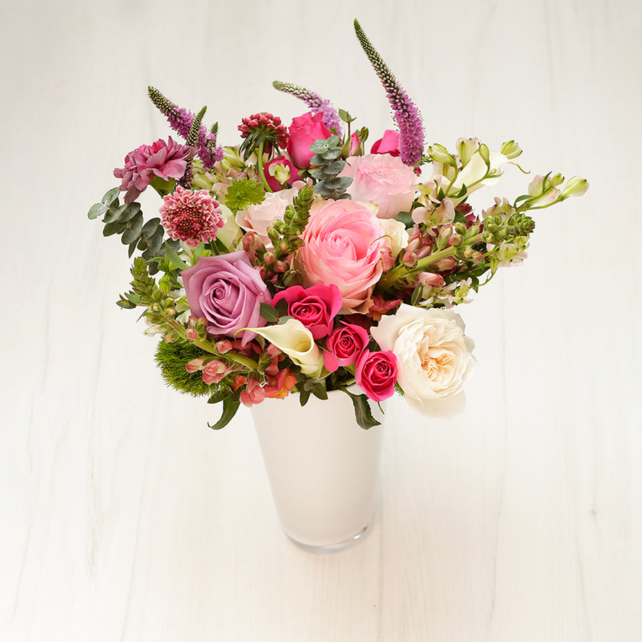 Signature - Delivers Monthly - 6 Month Prepay - Enjoy Flowers