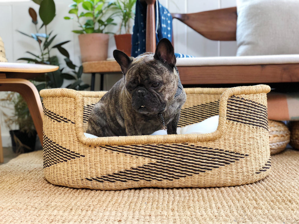 TigerPig & Co Dog Bed Collab
