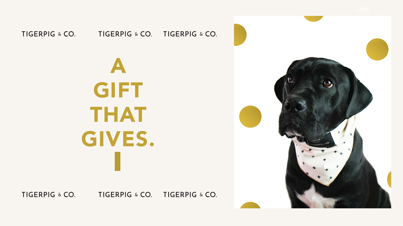 TigerPig & Co Dog Accessories Holiday Shoot