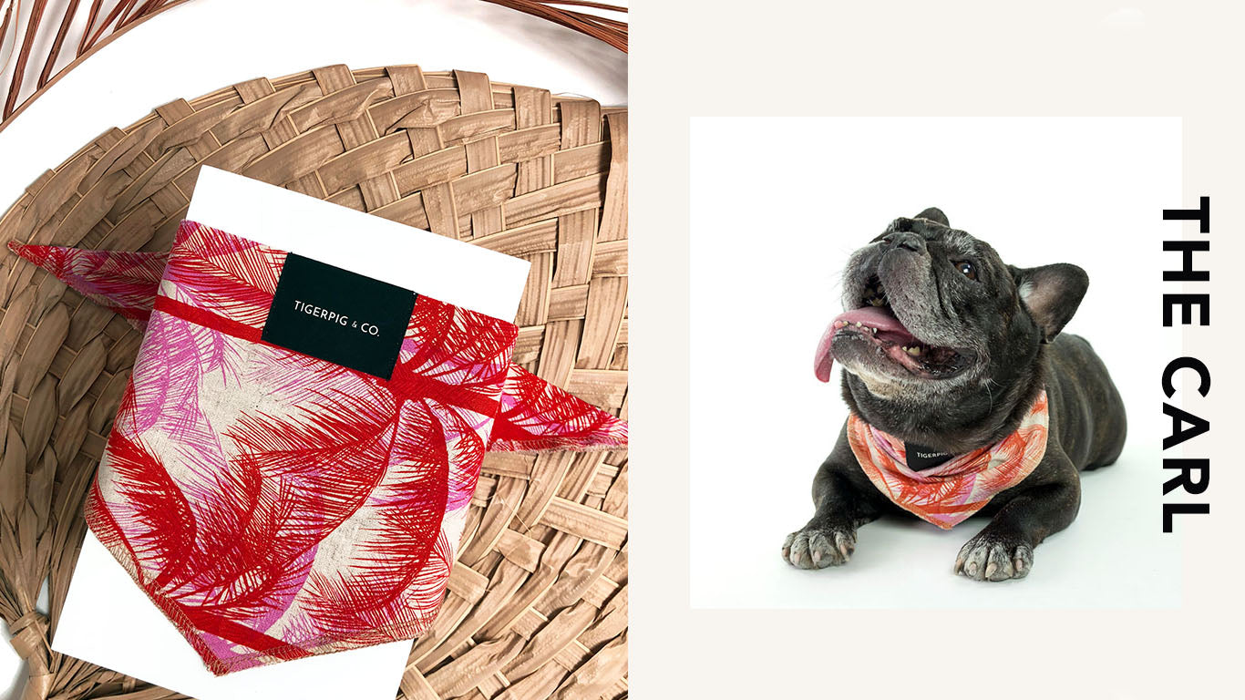 Tigerpig and Co Pink and Red Palms Dog Bandana_Carl