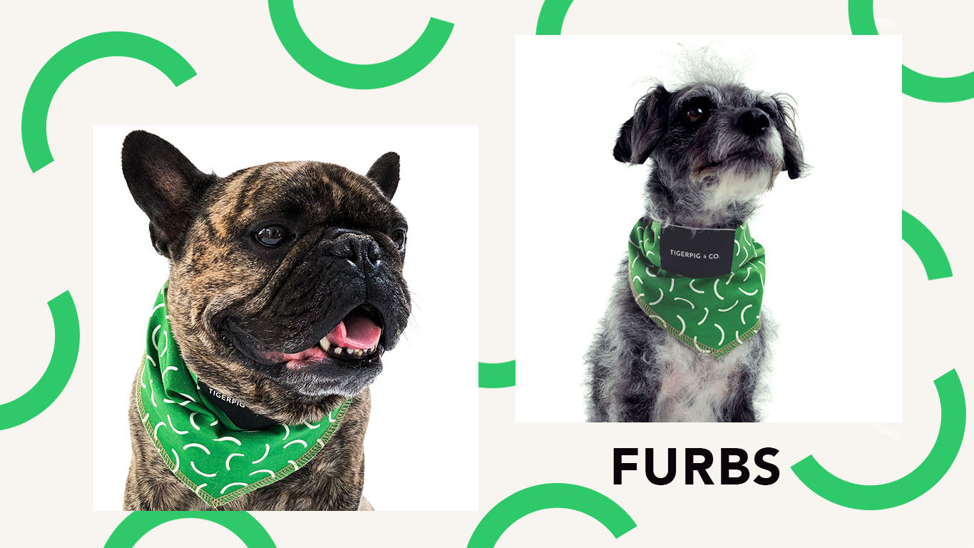 Tigerpig and Co Green Dog Bandana_Furbs