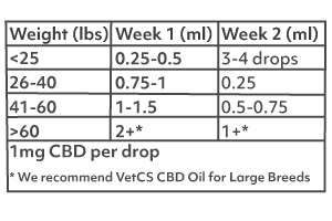 Photo of 1000mg CBD dosing chart for dogs