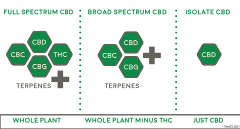 full spectrum broad spectrum cbd