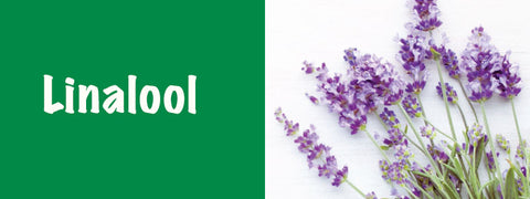 Linalool is what makes Lavender and Sage smell like they do
