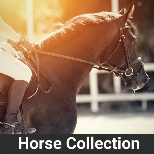 Photo of horse rider VetCS CBD Horse Collection