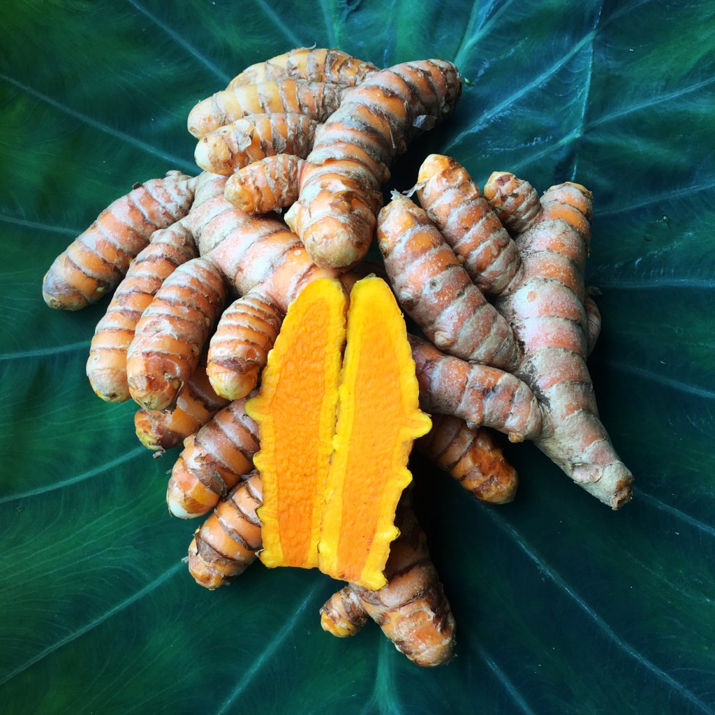 Big Island, fresh, organically grown Turmeric