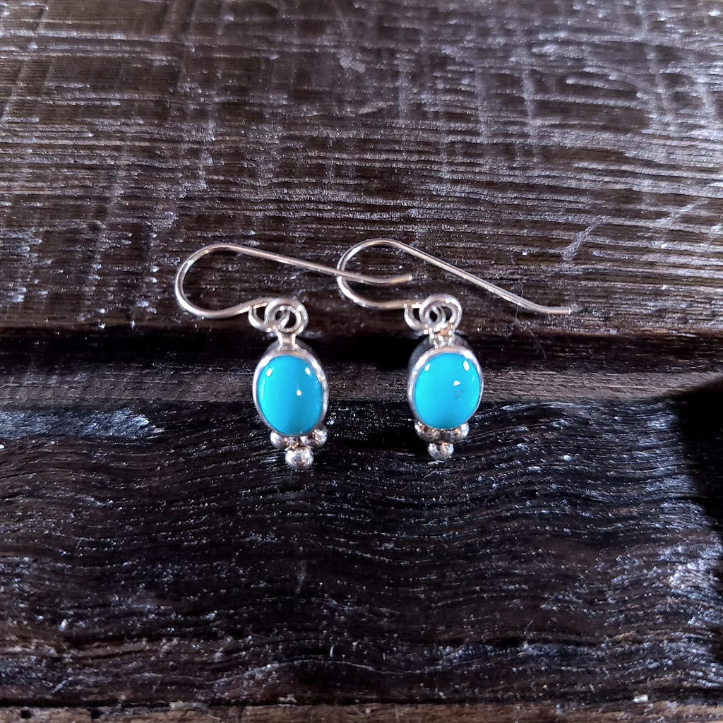 Sleeping Beauty Turquoise | Sterling Silver - Navajo | Native American Indian - Earrings
