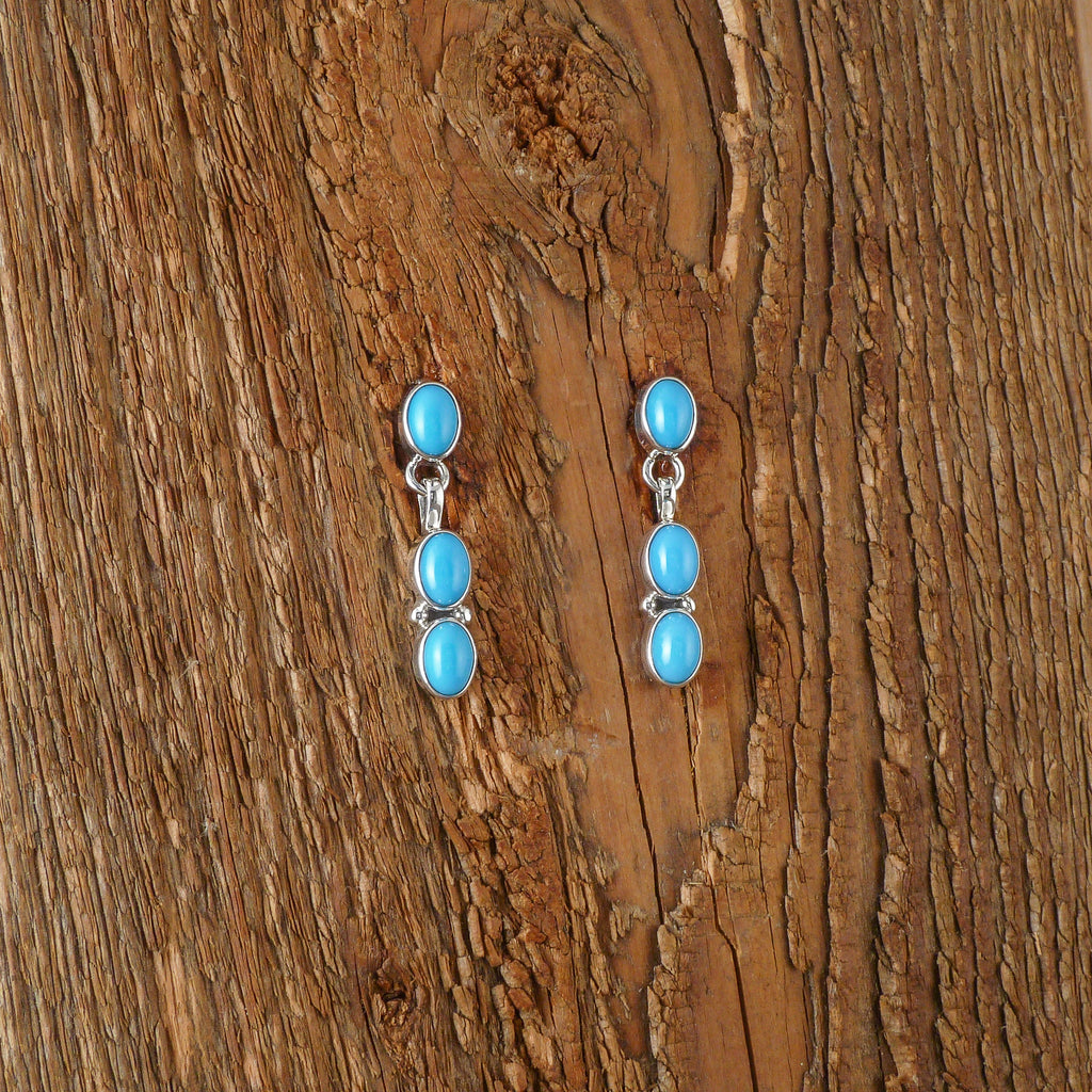 Light Blue Turquoise Earrings