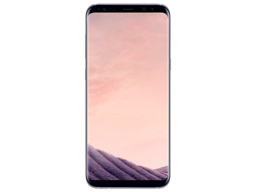 Samsung Galaxy S8+ Unlocked Orchid Gray (64 GB)