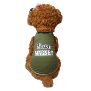 Babe Magnet T-shirt for doggies - Doggie Jewels