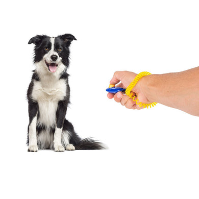 Colorful Dog Training Clicker with Wrist Strap - Doggie Jewels