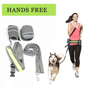 Hands Free Dog Leash Collar - Elastic Belt Running Dog Leash Set - Doggie Jewels