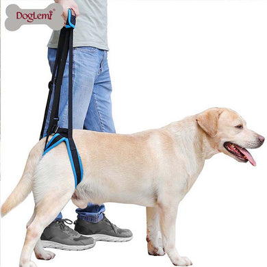 Adjustable Dog Lift Harness for Back Legs -Aid Assist Tool - Doggie Jewels