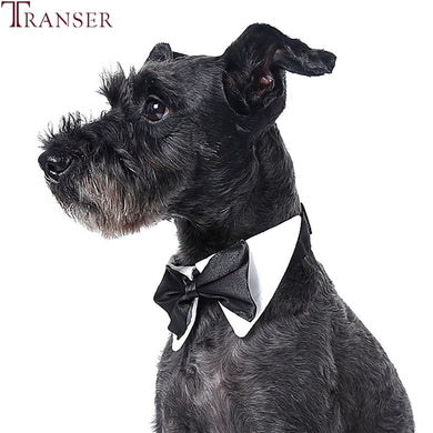 Doggie  Bow Tie Grooming Accessory - Doggie Jewels