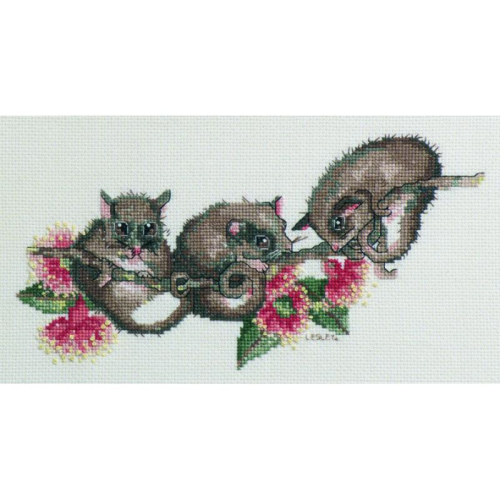 Possums - Australian Collection - By Lesley Suzanne Davies