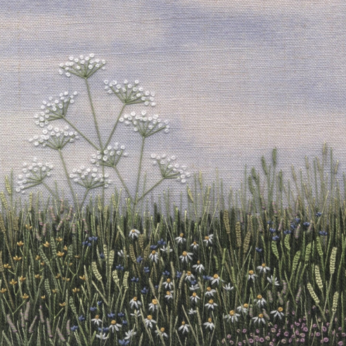 Cow Parsley Meadow by Jo Butcher