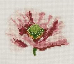Poppy Mini Cross Stitch by DMC