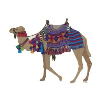 Camel By Roseworks Designs
