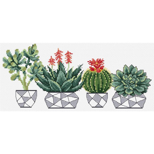 Succulents Cross Stitch by DMC