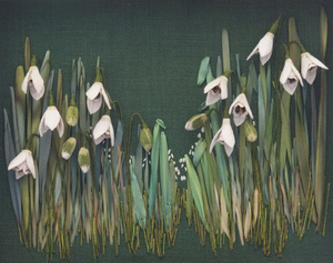Snowdrops By Catherine Howell