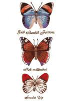 Botanical Butterflies By Roseworks Designs
