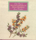 Little Book Of Wildflowers In Silk Ribbon By Jenny Bradford