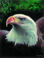 Magestic Eagle Tapestry