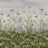 Field of Cow Parsley by Jo Butcher