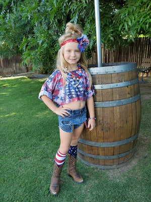 Stars and Stripes Hilo Distressed Shorties 2020