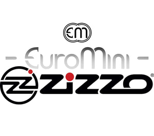 What Happened to Euromini (Euro Mini)???
