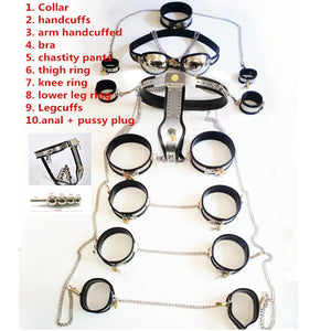 11 pcs/set Stainless steel female chastity belt bdsm bondage harness fetish sex slave game for women.