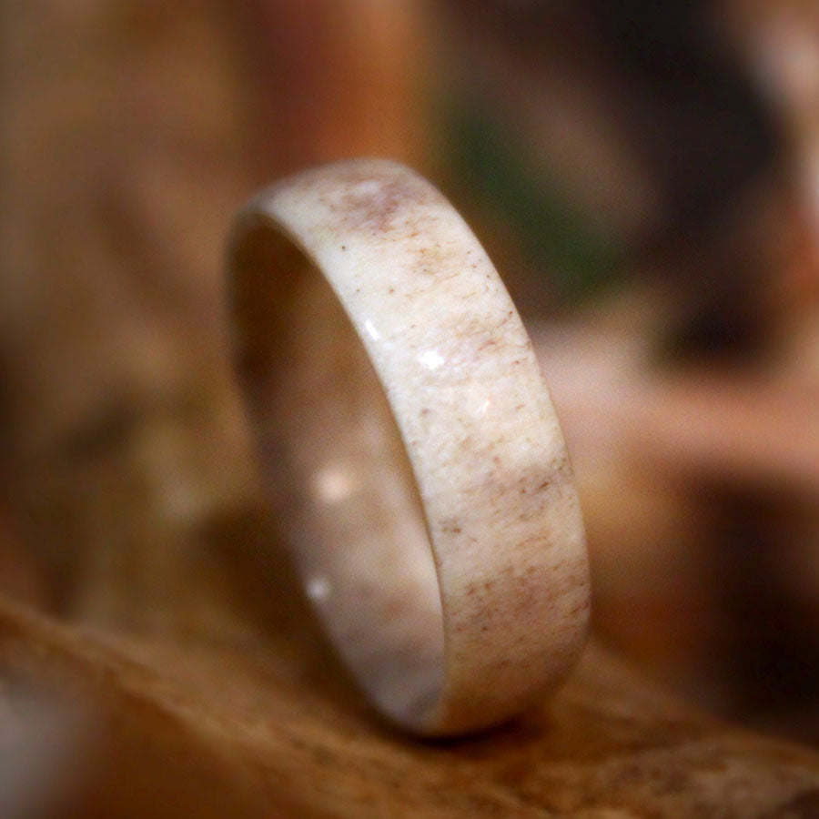 Solid Antler Ring (6mm)