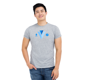 Vuetify Store