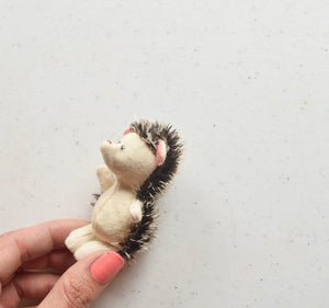 Teeny Hedgehog Friend