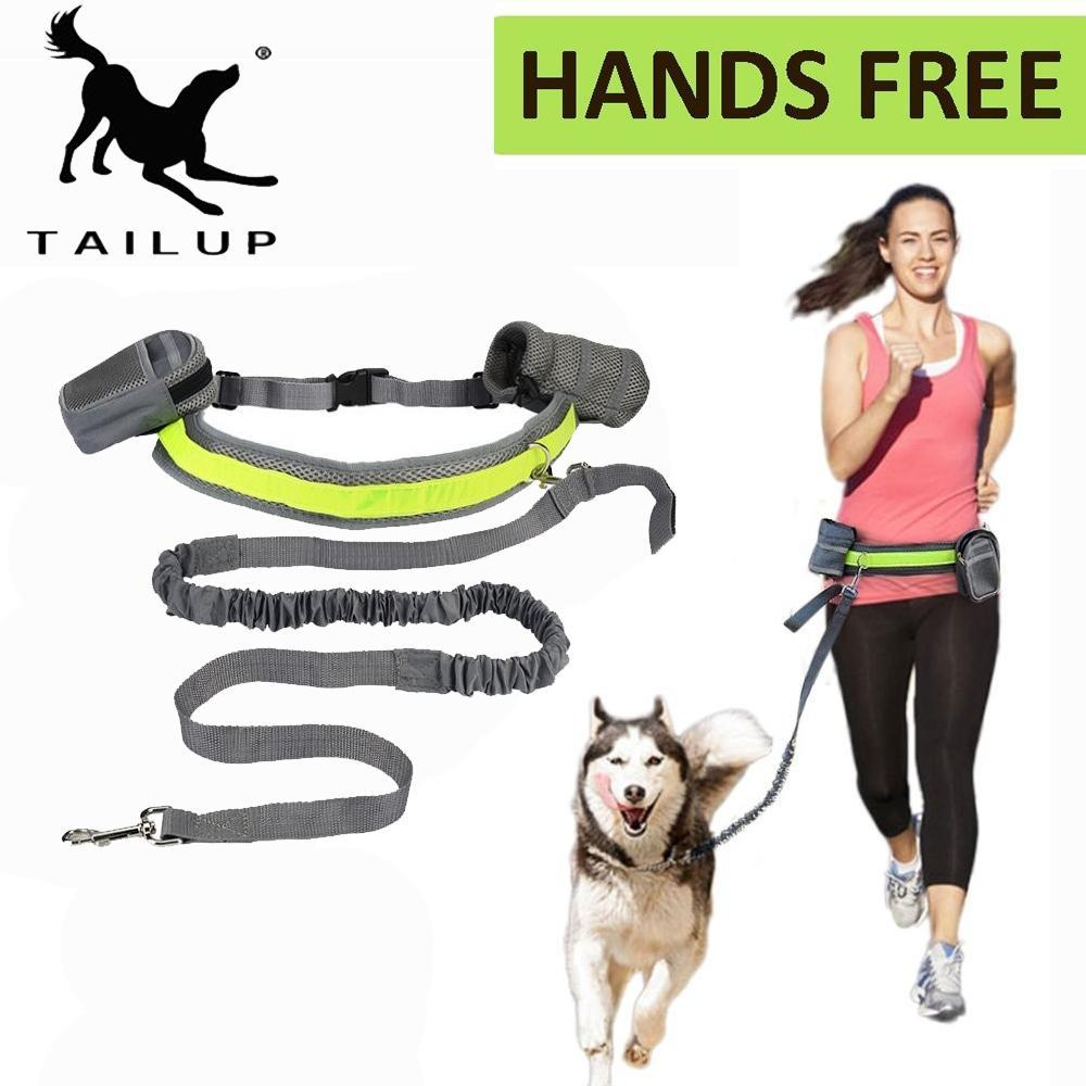 Pet Hands Free Running Leash For Large Dog