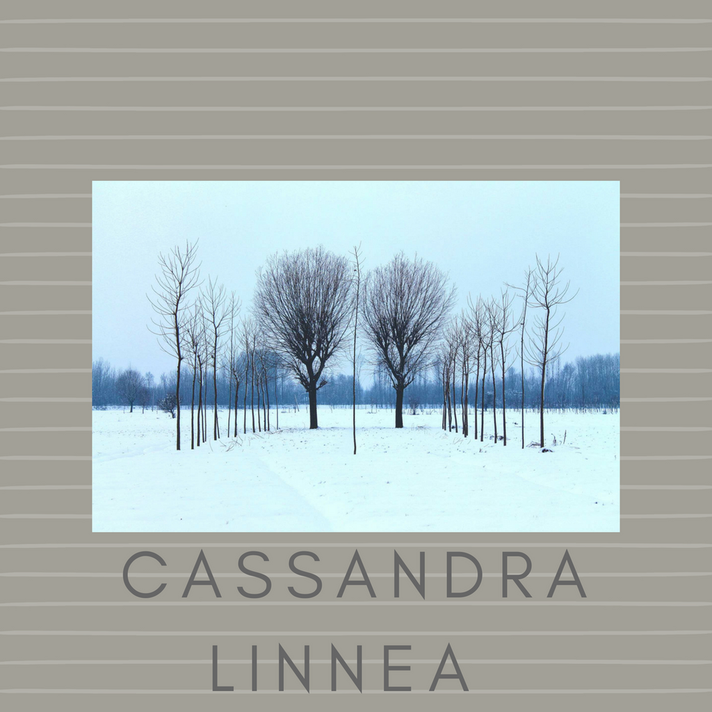 Additional Hypnotherapy Sessions with Cassandra Linnea, 1 hour