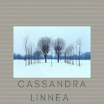 Additional Hypnotherapy Sessions with Cassandra Linnea, 1 hour - Mystical Voyager