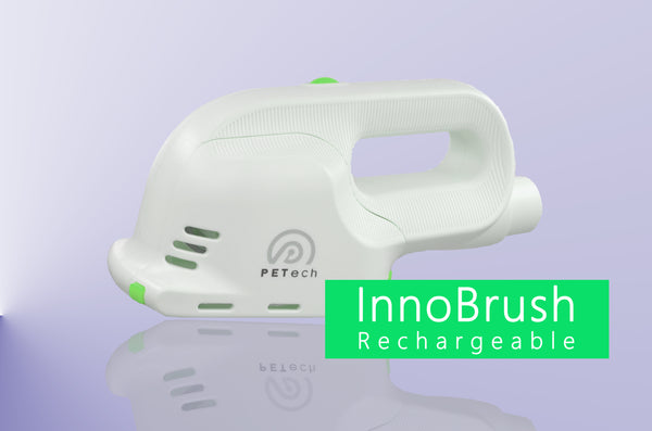 InnoBrush Rechargeable