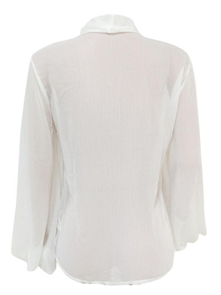 See-Through Plain Lantern Sleeve Mid-Length Long Sleeve Blouse
