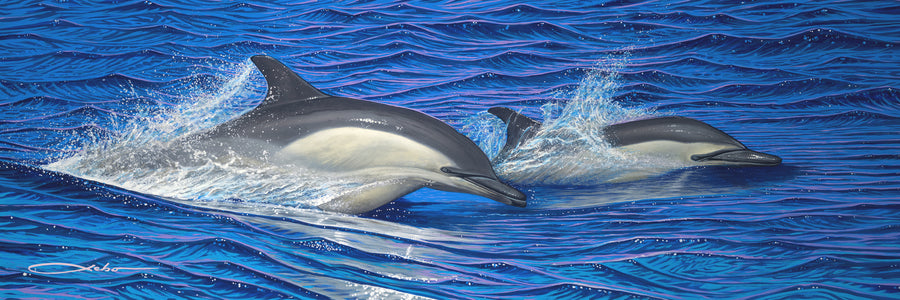 """Dolphin Blue"" Limited Edition - SeboArt.com"