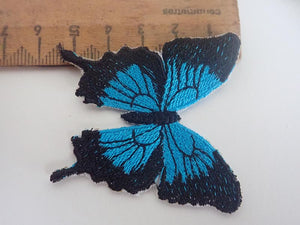 Blue Ulysses butterfly applique