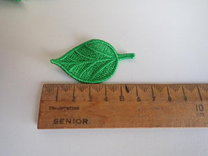 Green lace leaf