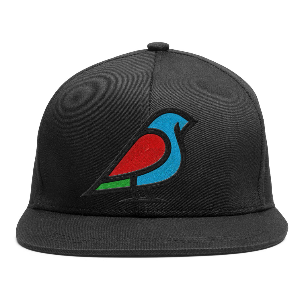 BIRB COLOR ON BLACK ICON SNAPBACK