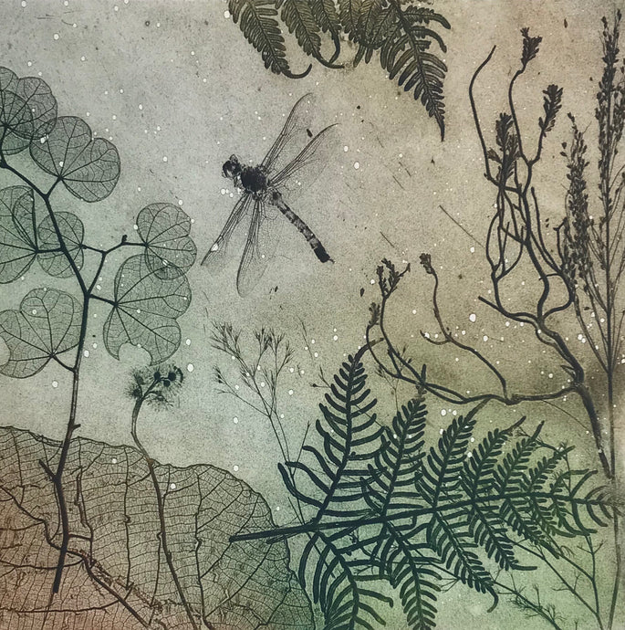 Dragonfly essence  etching