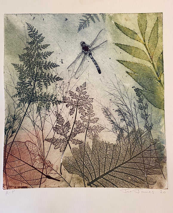 """Byfield Fern #2"" Original Etching"